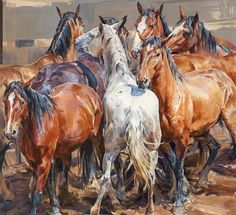 """Close Quarters"" - Limited Editions - All Artwork - Sophy Brown Arte Equina, Animal Paintings, Horse Paintings, Pastel Paintings, Horse Artwork, Cowboy Art, Horse Drawings, Equine Art, Animal Sculptures"