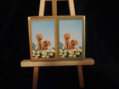 Whitman Guild 2 deck velour drawer playing card 2 puppies dogs on back gold edge