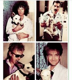 Everyone is being sweet to the dog, then there is Roger trying to eat him.