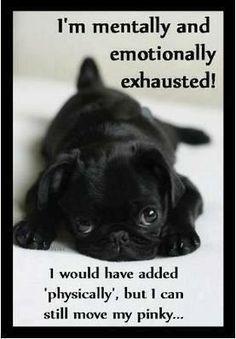 I'm exhausted.