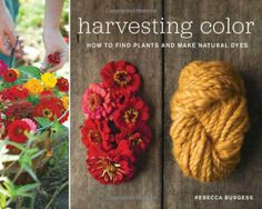 Harvesting Color: How to Find Plants and Make Natural Dyes: Rebecca Burgess