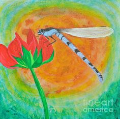 "Dragonfly On Red Flower  12"" x 12"" Acrylic Stretched Canvas GALLERY SPECTRUM frame.  $280.00  http://www.sallytiskarice.com/STR/Welcome.html"