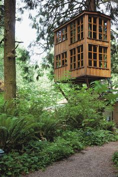 Treehouse Masters' Pete Nelson: 5 Things Every Beginning Builder Must Know – Parade