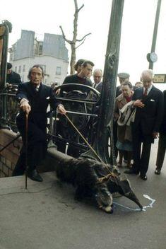 Salvador Dali taking his anteater for a walk in Paris, 1969 - Imgur