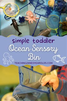 Create a toddler ocean sensory bin that includes nets and jumbo sea creatures! Those little hands and fingers will be strengthened as the children scoop the nets in and out of the water. A fun hands-on learning activity! #toddler #fish #ocean #sensory #sensorybin #watertable #toddlerplay #oceantheme #beach #age2 #teaching2and3yearolds Ocean Activities, Summer Activities, Learning Activities, Fish Ocean, Ocean Art, Ocean Themes, Beach Themes, 3 Year Olds, Hands On Learning