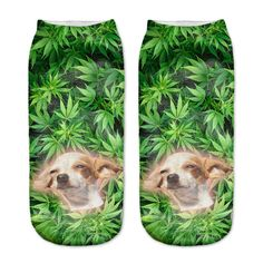 High Chihuahua An... http://www.jakkoutthebxx.com/products/zohra-new-arrival-women-low-cut-ankle-socks-funny-aliens-3d-printing-sock-cotton-hosiery-printed-sock-40901?utm_campaign=social_autopilot&utm_source=pin&utm_medium=pin  #wanelo #shoppingtime #whattobuy #onlineshopping #trending #shoppingonline #onlineshopping #new