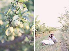 Ashley + Marshall // Idaho Wedding Photography » Boise Wedding Photographers – Ampersand Studios