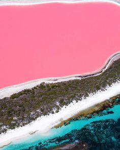 Lake Hillier, Middle Island,Esperance, Western Australia Product Information Australia Map, Pink Lake Australia, Vogue Australia, Lake Hillier Australia, Queensland Australia, Great Barrier Reef, Perth, Brisbane, Rosa Strand