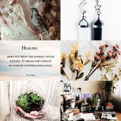 Pukwudgie Aesthetics ~Healing: does not mean the damage never existed, it means the damage no longer controls our lives~