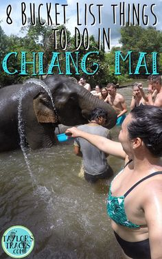 8 Bucket List Things To Do in Chiang Mai Pin ******************************************** Chiang Mai Thailand | Chiang Mai things to do | Chiang Mai bucket list | Chiang Mai travel | Chiang Mai Thailand elephants | Chiang Mai temple | Things to do in Chiang Mai | Thailand travel | Thailand backpacking | Thailand travel tips | Thailand things to do | Where to stay in Thailand | Thailand planning | Thailand places to visit | Thailand destinations