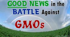 On April 16, 2014, the Vermont Senate passed the first no-strings-attached GMO labeling bill (H.112) by an overwhelming margin—28-2. The bill sailed through a House/Senate conference committee and was approved by the House of Representatives on April 23.