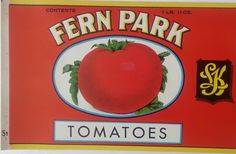 Fern Park Brand Tomatoes Unused Vintage Can Label Packed for L. Klein Chicago, Illinois by VintagePaperTrail on Etsy