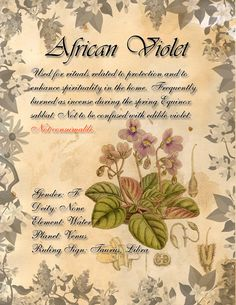 Book of Shadows: Herb Grimoire - African Violet by CoNiGMa on DeviantArt