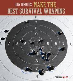 Why Air Guns Make The Best Survival Weapons | The Power Of Air Gun Firearm For Survival Situation By Survival Life http://survivallife.com/2014/04/17/best-survival-weapons-air-guns/