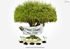 Essays on save trees save earth
