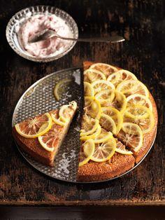 Getunkter Zitronenkuchen I © GUSTO / Stefan Liewehr I www.gusto.at