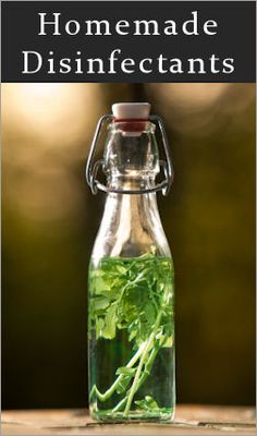 14 Bleach-Free Surface Disinfectants Bottled Herb Infusions are homemade bacteria busters using fresh or dried herbs, essential oils, vinegar and other basic items you likely have in your home already. These will not only fight germs and bacteria, but most also smell a lot fresher too.