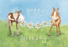 Horsey Birthday Wishes Horse Happy Image Pictures