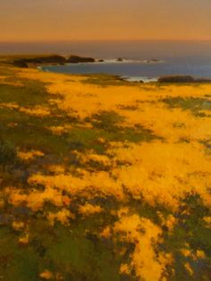 """Pt. Lobos Poppies"" - Brian Blood"