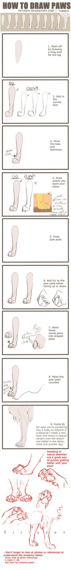 How to Draw Paws Tutorial (easy) by TIFFASHY on DeviantArt