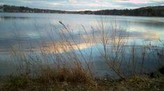 sunset walk, Horn Pond