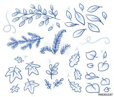Vektor: Set of different leaves and branches. Hand drawn vector illustration.