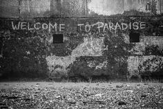Welcome to Paradise... Fujifilm X-T1 & Fujinon 90mm f2 #london #uk -  #travel #wanderlust #globaltraveller #globetrotter #worldtraveler #worldtraveller #world #journey #fuji #tilleyhat #peakdesign #link #xphotographer #lifeasaphotographer #lifestyle #fujiuser #repostmyfuji #risktakers #instagood #instacool #instatravel #party #fujilife #instadaily