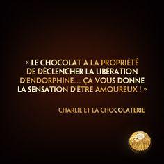 ☆Citation divine☆ « Le chocolat a la propriété de déclencher la libération d'endorphine... ça vous donne la sensation d'être amoureux ! » (Charlie et la Chocolaterie)