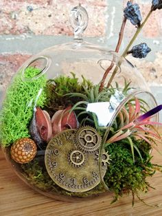 Steampunk Air Plant and Moss Terrarium - A Perfect Valentines Day, Birthday or Housewarming Gift. $30.00, via Etsy.