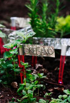 aluminum tape garden markers...it's a good thing. And not even from Martha