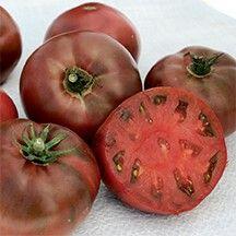 Tomato 'Carbon': very good flavor