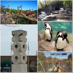 I am sharing some of my favorite cheap or free things to do in St. Including a nationally recognized zoo, science center and children's museum Missouri, Dream Vacations, Vacation Spots, Vacation Destinations, Vacation Ideas, Weekend Trips, Day Trips, Oh The Places You'll Go, Places To Visit