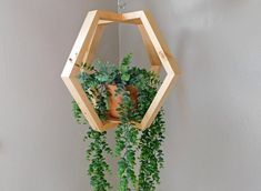 There are many distinct wooden planters in the marketplace, plus all of them are exact flexible. You produce a few ideas to create beyond one's house and also your backyard: 50 Easy DIY Woodworking Projects to Decor Your Home – Kinds of Wooden Planters Hanging Wall Planters, Plants For Hanging Baskets, Wooden Planters, Diy Hanging, Wall Plant Holder, Plant Holders, Plant Hanger, House Plants Decor, Plant Decor