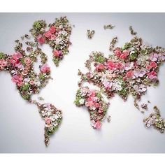 Flowers red branch world pink world map art leaf flower plant flora petal jewellery fashion accessory Art Floral, Anna And The French Kiss, Beautiful Tumblr, Beautiful Images, Beautiful Things, World Map Art, Leaf Flowers, Original Wallpaper, Flower Art