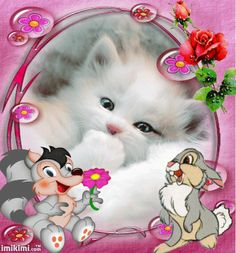 de gif All gif playback time of shares varies according to your internet speed. Cute Baby Cats, Cute Cat Gif, Cute Cats And Kittens, I Love Cats, Kittens Cutest, Cute Dogs, Bisous Gif, Love Wallpapers Romantic, Good Night Gif