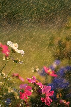 Things to do this #summer - dance in the rain Photo by Darren Fisher