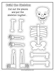 Human Body Worksheets - Itsy Bitsy Fun # human body activities for kids Human Body Worksheets - Itsy Bitsy Fun Human Body Lesson, Human Body Science, Human Body Activities, Human Body Unit, Skeletal System Activities, Kid Science, Science Activities, Science Lessons, Science Lesson Plans