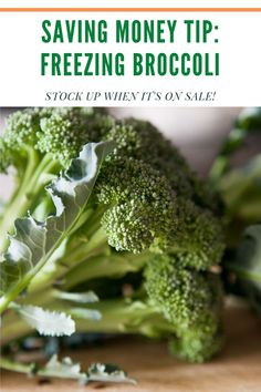 Simple steps to freeze broccoli to use year round in dishes.   Learn how to store your broccoli for long-term use to save money when it's out of season. Easy Broccoli Recipes, Frozen Broccoli, Cucumber Recipes, Fresh Broccoli, Broccoli Cheddar, Broccoli Beef, Side Dishes For Chicken, Vegetable Side Dishes, All Vegetables