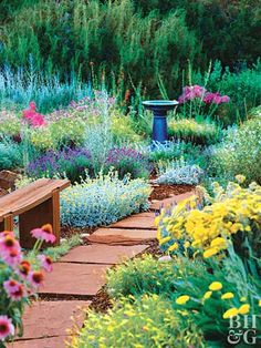 Drought-Tolerant Garden Plan - This informal mixed garden bed features drought-tolerant trees, evergreen shrubs, perennials, and annuals.