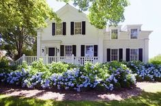 darling white house with black shutters