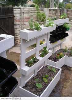 Foto: leuk voor in mijn kleine tuin.. Geplaatst door wenneke1 op Welke.nl