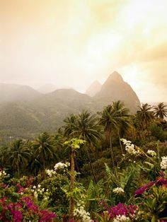 The Caribbean island of St Lucia. Lovely, one of the top destinations , get yourself together for a romantic break Best Honeymoon Spots, Honeymoon Destinations, Vacation Spots, Caribbean Honeymoon, Southern Caribbean, Italy Vacation, Oh The Places You'll Go, Places Around The World, Places To Travel