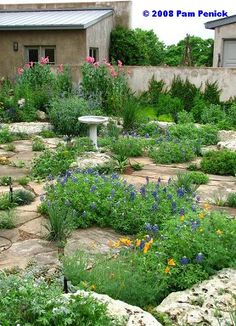 Austin garden, for the front yard? I love this look.