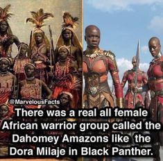 Avengers Memes, Marvel Memes, Marvel Dc Comics, Marvel Avengers, Dahomey Amazons, Pokemon, Black History Facts, Black Women Art, African American History