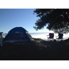 Mt. Veeder, Napa Ca
