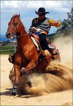 My fav thing to do....reining! Drop n stop!!!!