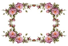 flower_frame_by_collect_and_creat-d69ijjv.png (1904×1304)