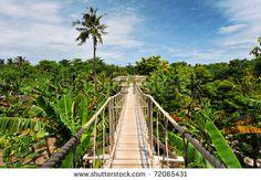 № ~ stock photo : Wood Bridge
