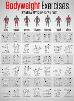 Infographic: 42 Illustrated Workouts To Tone Up Different Parts Of The Body - DesignTAXI.com