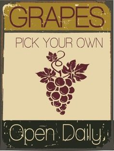 Pick Your Own Grapes Metal Sign, Vineyard, Winemaking, Fresh Fruit, Outdoors #OMSC #Contemporary